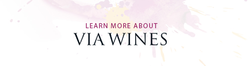 learn via wines